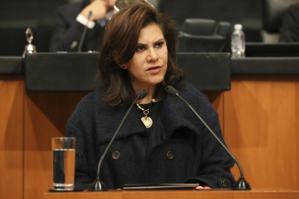 Titular de la Comisión de Vivienda del Senado, María Elena Barrera