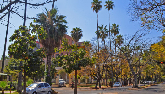 Historia, arquitectura y cercanía: top 5 residencias en La Americana