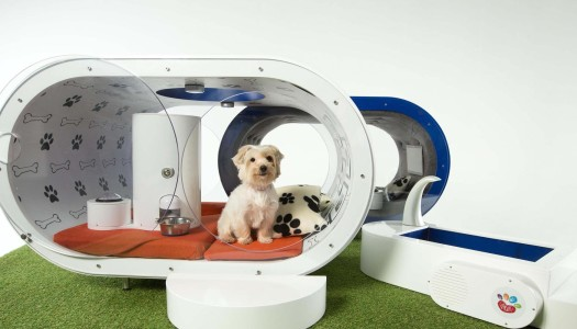Dream Doghouse la casa de los sueños de tu mascota ¡por 30 mil USD!