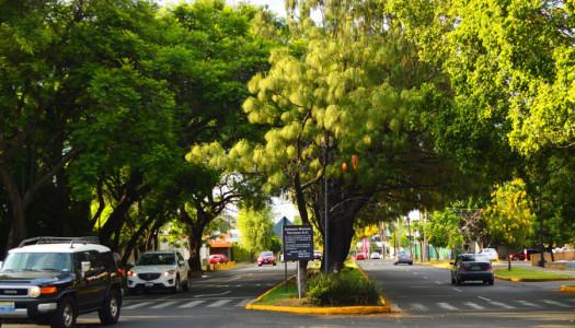 Fraccionamiento Monraz: la pequeña gran joya habitacional de GDL