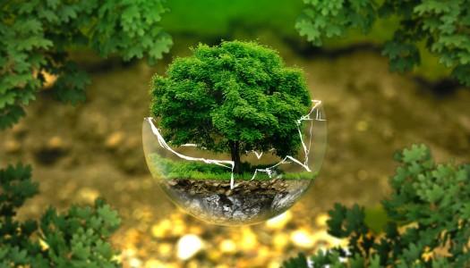 Las inversiones sustentables son más redituables.