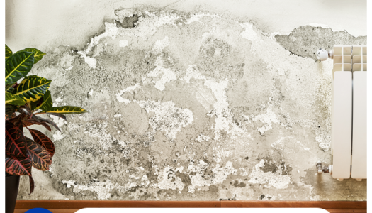 Señales de humedad en tu hogar