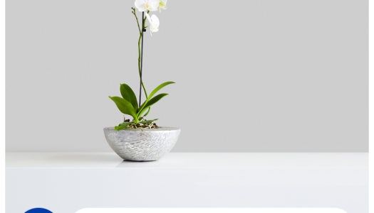 Cómo decorar un hogar minimalista