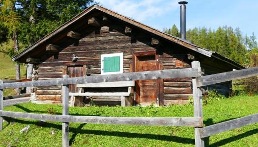 Materiales naturales para construir tu cabaña